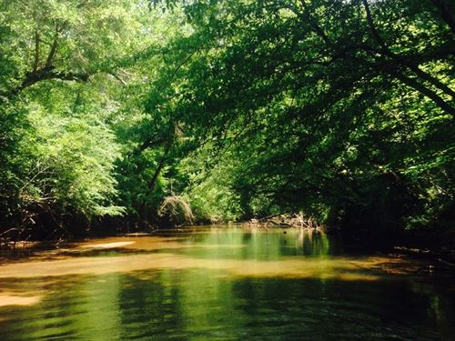 I-26 Tyger River Spartanburg Tract : Roebuck : Spartanburg County : South Carolina