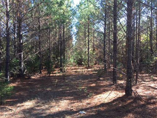160 Acres of Timber And Recreation : Coffeeville : Grenada County : Mississippi