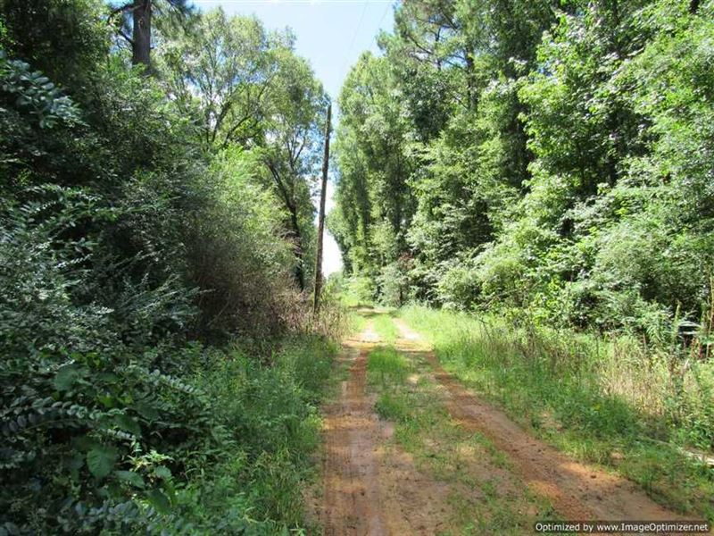Expired 765 acres recreational property on ranch for for Ranches for sale in mississippi