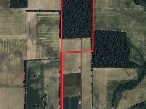 42 Acres of Land For Sale in Adams : Pleasant Mills : Adams County : Indiana