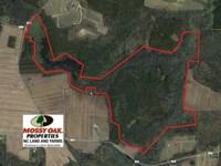 289 Acres of Hunting And Timber La : Columbia : Tyrrell County : North Carolina