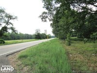 Beautiful Pasture And Hay Land : Durant : Holmes County : Mississippi