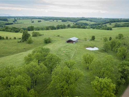 Southern Missouri Rotational Grazi : Wasola : Ozark County : Missouri