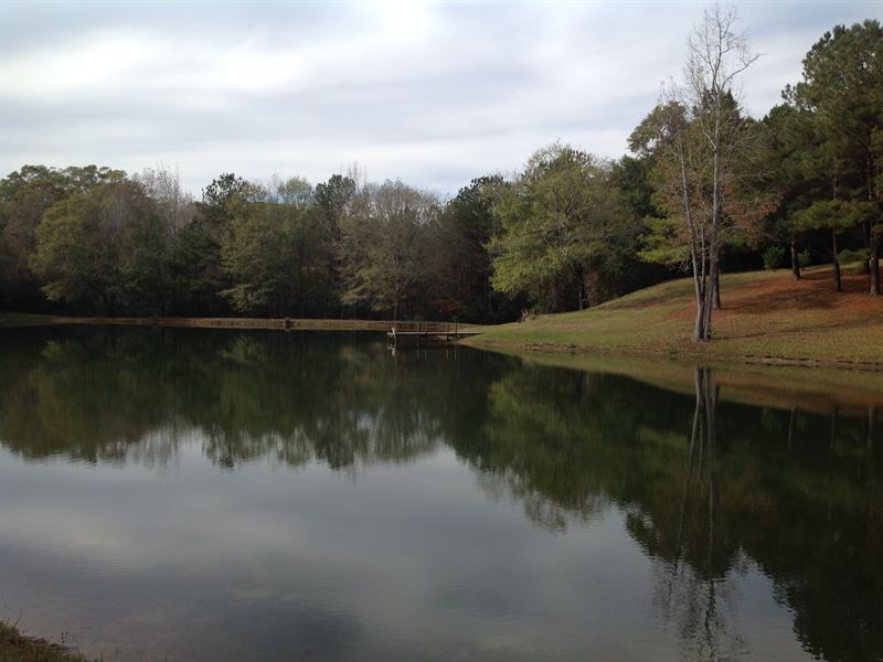 38 acre homestead with a pond   ranch for sale   valley