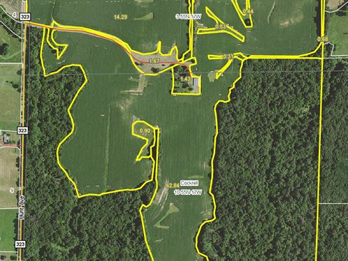 164.93 Acres Hunt Ave Chariton Co : Salisbury : Chariton County : Missouri