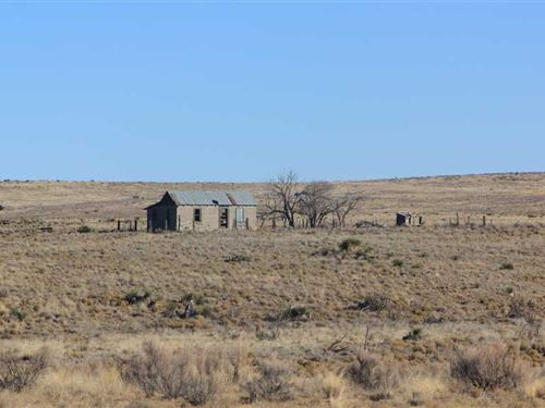 640 Acres at Claunch, NM : Claunch : Socorro County : New Mexico