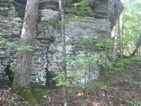 40 Beautiful, Secluded Acres Rig : Searcy : White County : Arkansas
