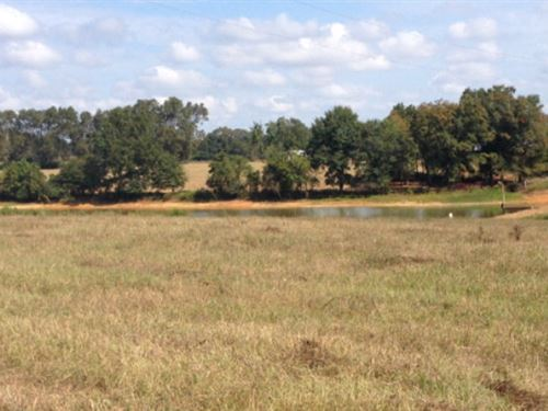 37+/- Ac With 4 Ac Pond : Brundidge : Pike County : Alabama