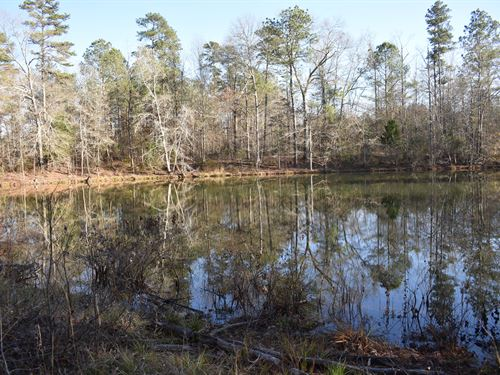 Big Indian Creek Tract With Pond : Madison : Morgan County : Georgia