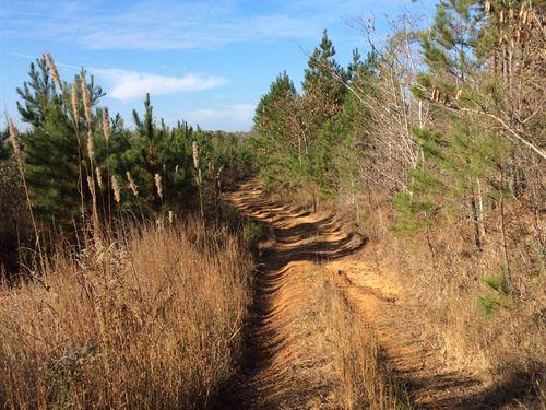 Kay - Brawner Tract : Rienzi : Alcorn County : Mississippi