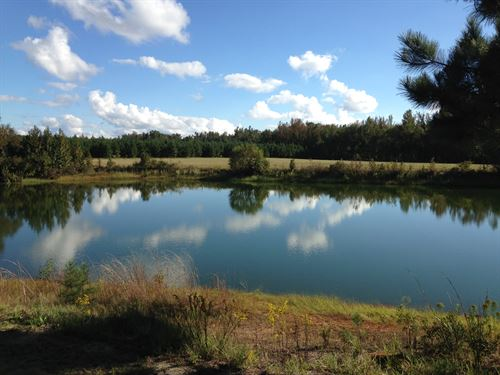 Beautiful Mini Farm With 3 Ponds : Stapleton : Glascock County : Georgia