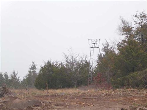 Hunter's Dream on Frazier Creek Pu : Rattan : Pushmataha County : Oklahoma