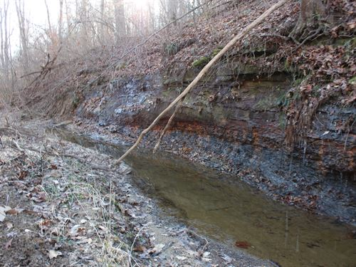 Dunkle Creek Rd - 255 Acres : Mc Arthur : Vinton County : Ohio