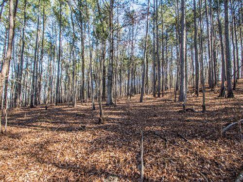14 Rocky Hollow Ln : Sterrett : Shelby County : Alabama