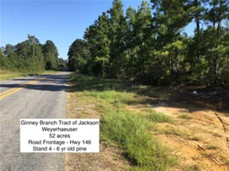 Ginney Branch Tract, Jackson Paris : Ranch for Sale : Chatham : Jackson  Parish : Louisiana