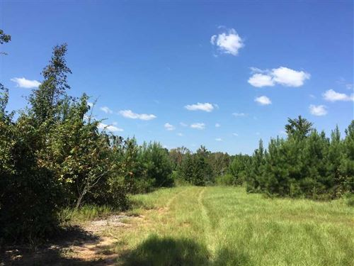 Cypress Bayou Tract, Jackson Paris : Ruston : Jackson Parish : Louisiana