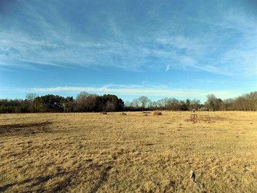 Sc Acreage For Farm, Ranch, Timber : Bennettsville : Marlboro County : South Carolina