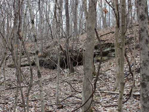 Sr 792 - 17 Acres : Stockport : Morgan County : Ohio