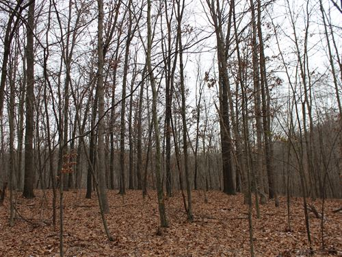 Sr 792 - 24 Acres : Stockport : Morgan County : Ohio