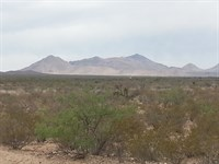 80 Acs, Hunting Land $398/Mo : Fabens : Hudspeth County : Texas