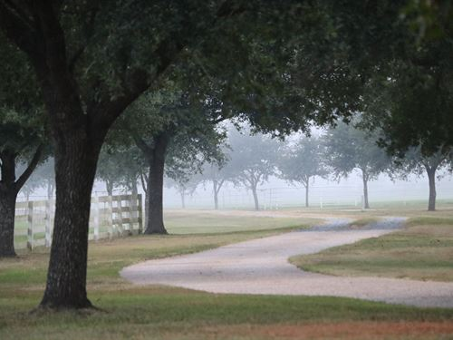 Beautiful, Remote Cattle Farm, Home : Keatchie : De Soto Parish : Louisiana