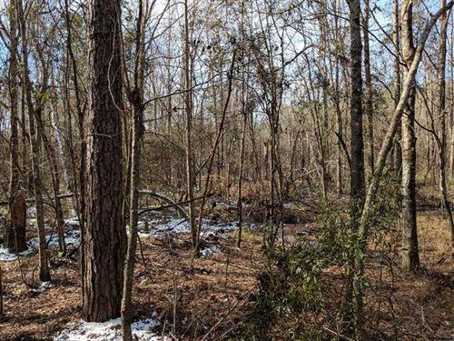 Luker Property : Nanafalia : Marengo County : Alabama