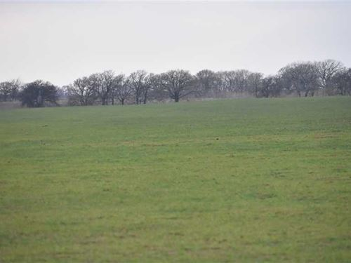 Clay County, Texas - 155 Acres of : Henrietta : Clay County : Texas