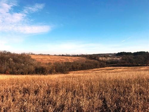 266+/- Acres Town Of Hickory Grove : Fennimore : Grant County : Wisconsin