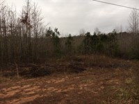 34.9 Ac On 3362 Hwy 154 Newnan : Newnan : Coweta County : Georgia