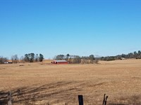 Harris Farm-Cattle Farm For Sale : Lincoln : Talladega County : Alabama