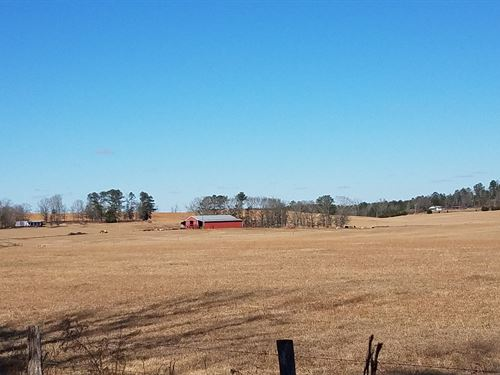 Harris Farm-Cattle Farm For Sale : Lincoln : Talladega County : Alabama