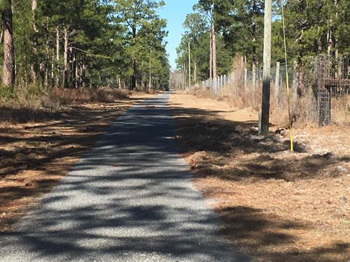 480 Acre High Fenced Hunting : Perry : Taylor County : Florida