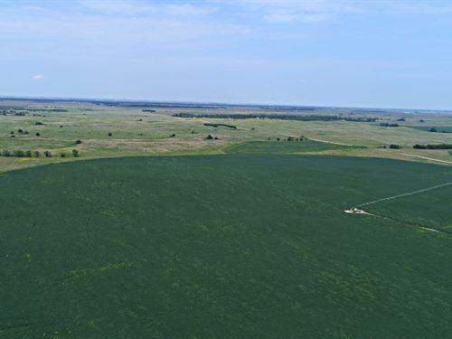 Kearney County Pivot : Minden : Kearney County : Nebraska