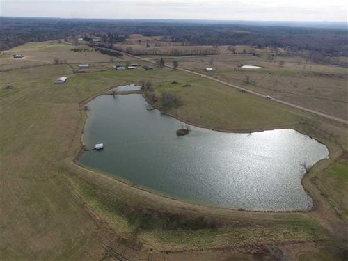 Montgomery County 240 Acre Cattle : Montgomery : Alabama