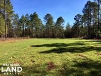 Randolph County Hunting And Timber : Cuthbert : Randolph County : Georgia