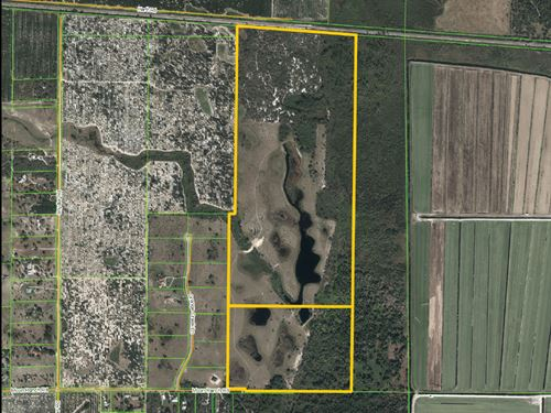 Moon Ranch Road - 225 Acres : Sebring : Highlands County : Florida
