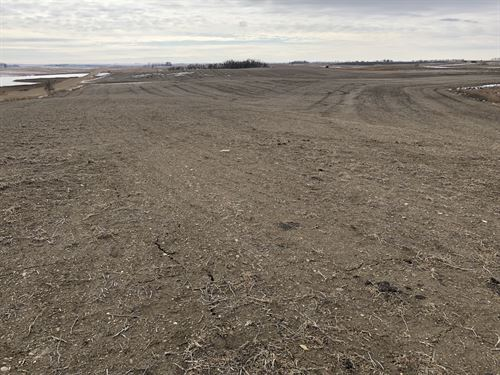 160 Acres - Marshall County Land : Britton : Marshall County : South Dakota