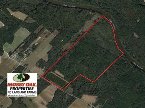 162 Acres of River Front Hunting : Elizabethtown : Bladen County : North Carolina
