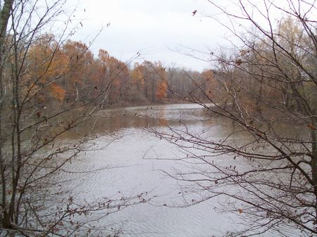 Mud River Cattle Ranch & Hunting : Browder : Muhlenberg County : Kentucky