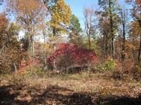 13 Acres In Mountain Home, AR : Mountain Home : Baxter County : Arkansas