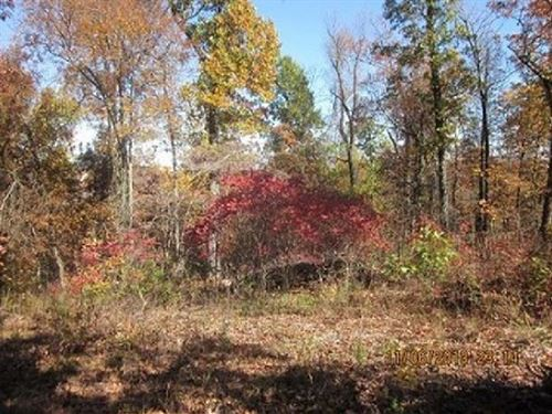 13 Acres In Mountain Home, AR : Mountain Home : Baxter County : Arkansas