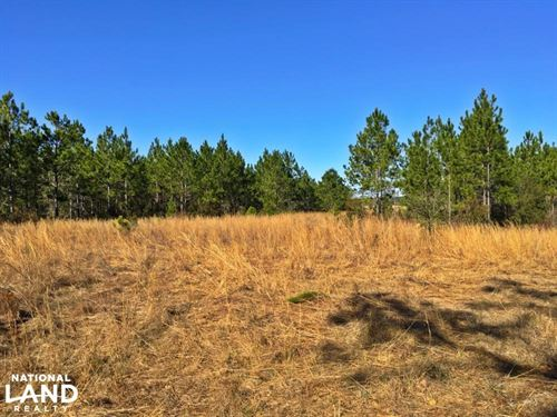 Gateswood Homesite And Recreational : Robertsdale : Baldwin County : Alabama