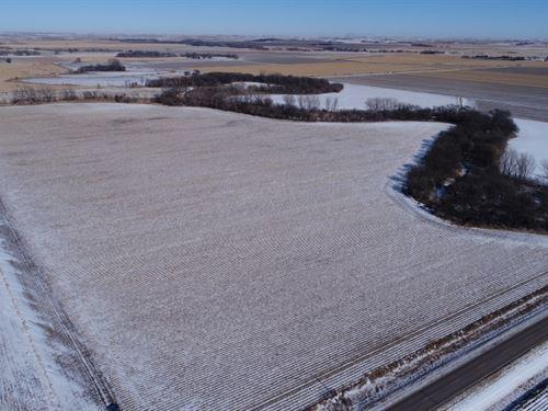 Dawson County Buffalo Creek Farm : Cozad : Dawson County : Nebraska