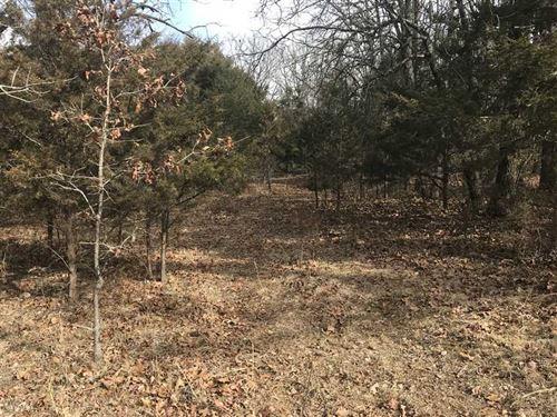 79 Acre Farm Near Hartville : Hartville : Wright County : Missouri