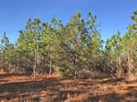 Flomaton Tract : Flomaton : Escambia County : Alabama
