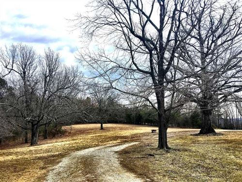80 Acre Hunting Property With Home : Yellville : Marion County : Arkansas