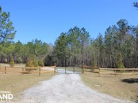 45 Acre National Forest Retreat : Shulerville : Berkeley County : South Carolina