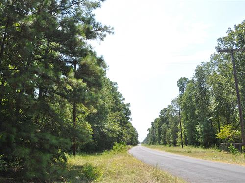 99 Acres Mangum Road : Livingston : Polk County : Texas