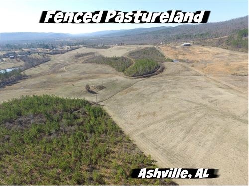 Fenced Pasture, Potential Pond : Ashville : Saint Clair County : Alabama