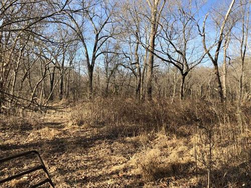 210 Acres Just Minutes From Gi : Gilbert : Searcy County : Arkansas